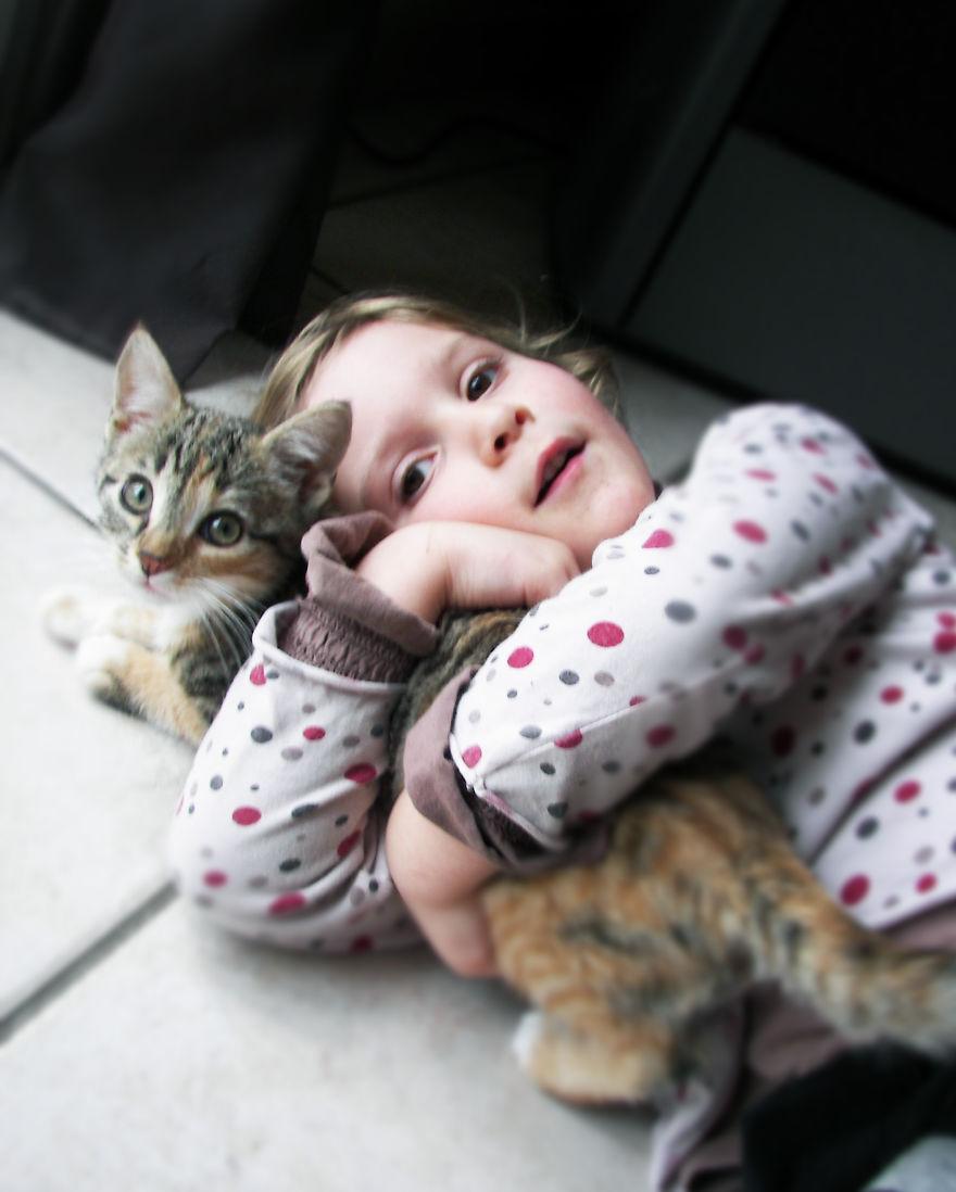 This Cat Is Mine!