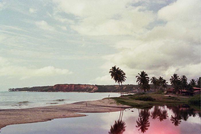 Cocos Beach In Paraiba Brasil
