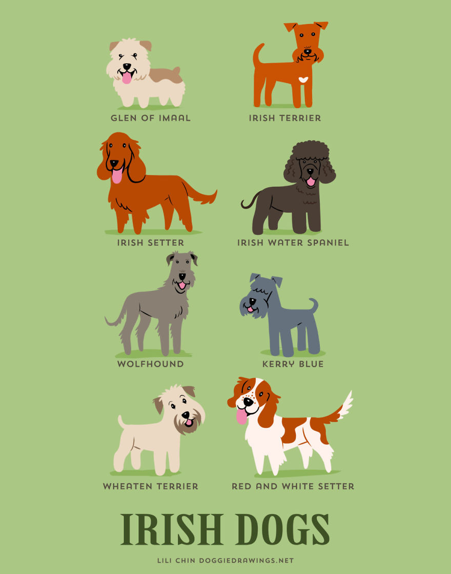 Dogs-Of-The-World-Cute-Poster-Series-Shows-The-Geographic-Origin-Of-Dog-Breeds7__880.jpg
