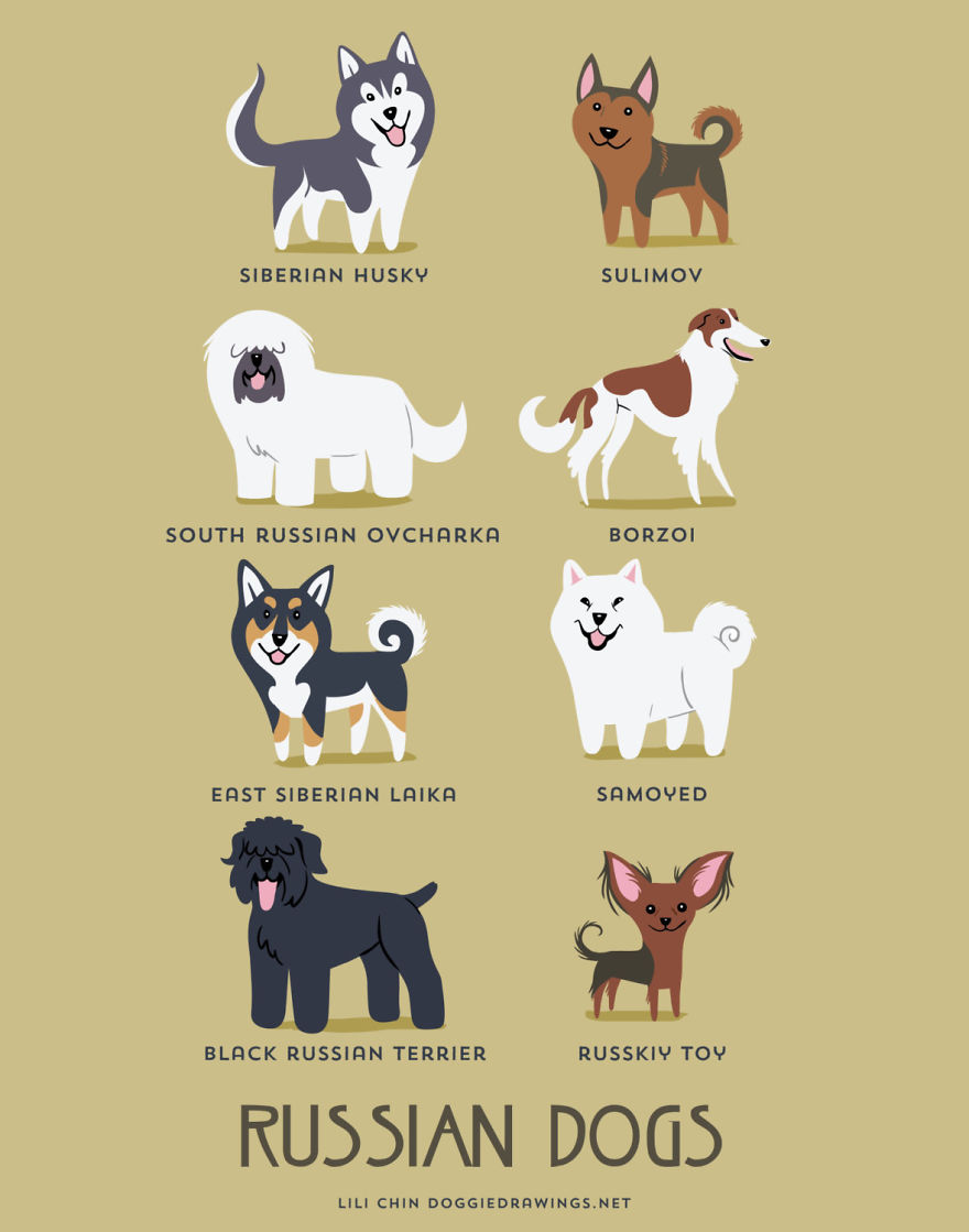 Dogs-Of-The-World-Cute-Poster-Series-Shows-The-Geographic-Origin-Of-Dog-Breeds9__880.jpg