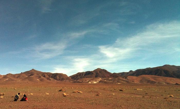 Llama Watching, Llama Waiting - San Pedro De Atacama, Chile