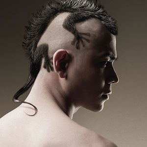 Gecko Haircut