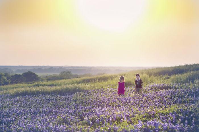 Little In A Bluebonnet Field At Sunset