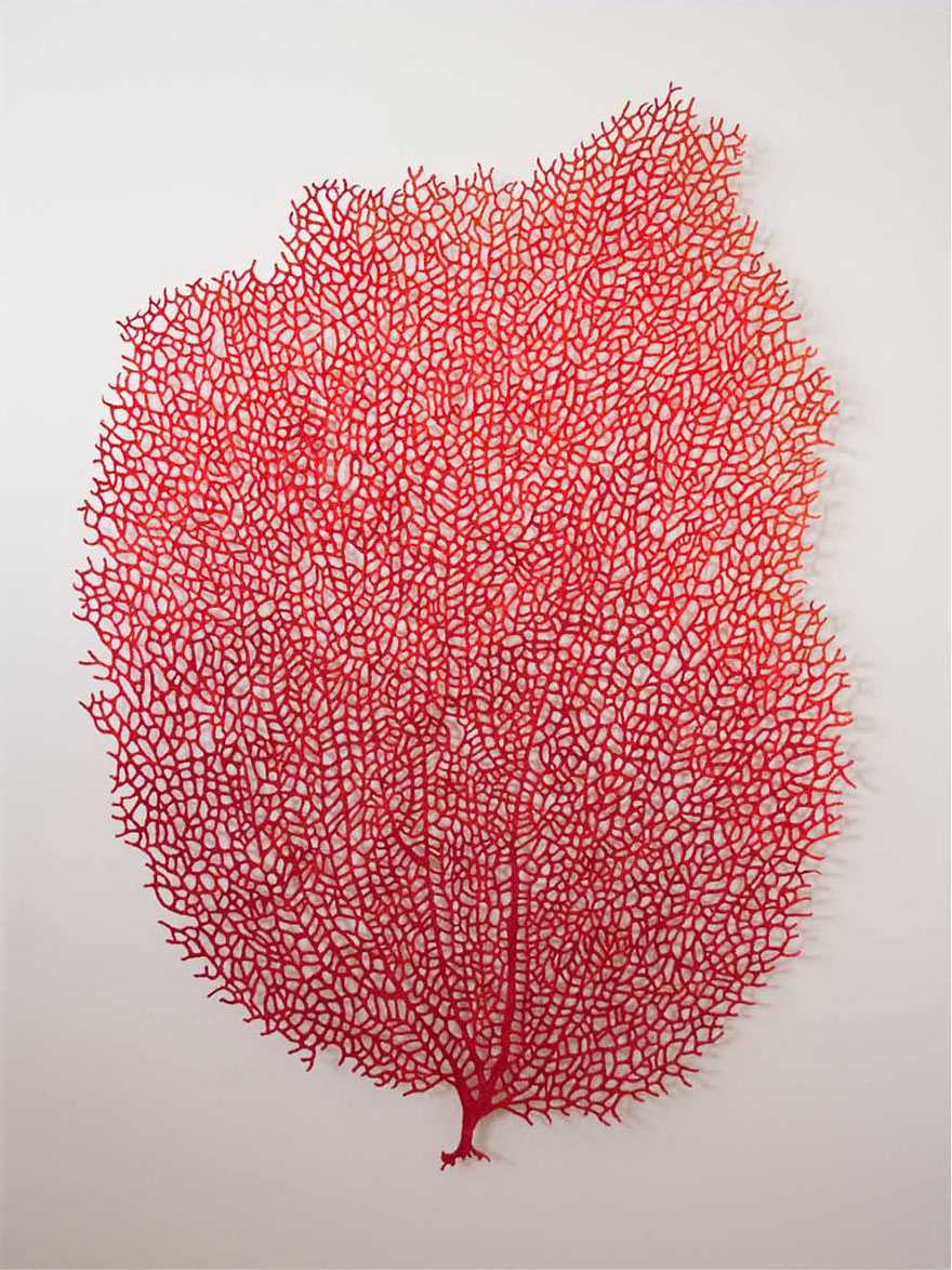 embroidery-sewing-sculptures-meredith-woolnough-4