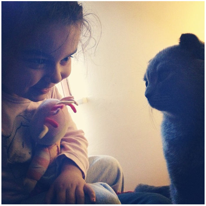 Child And His Cat