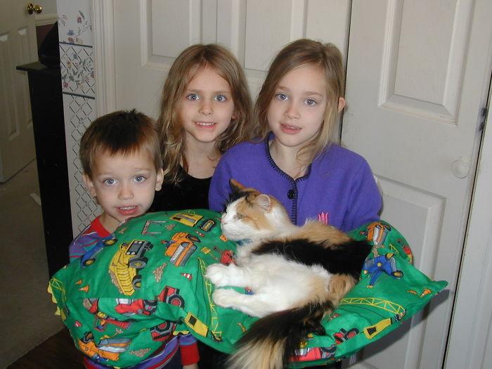 Kitty's Servants