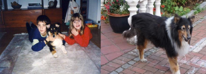 Sherry - 16 Years Apart