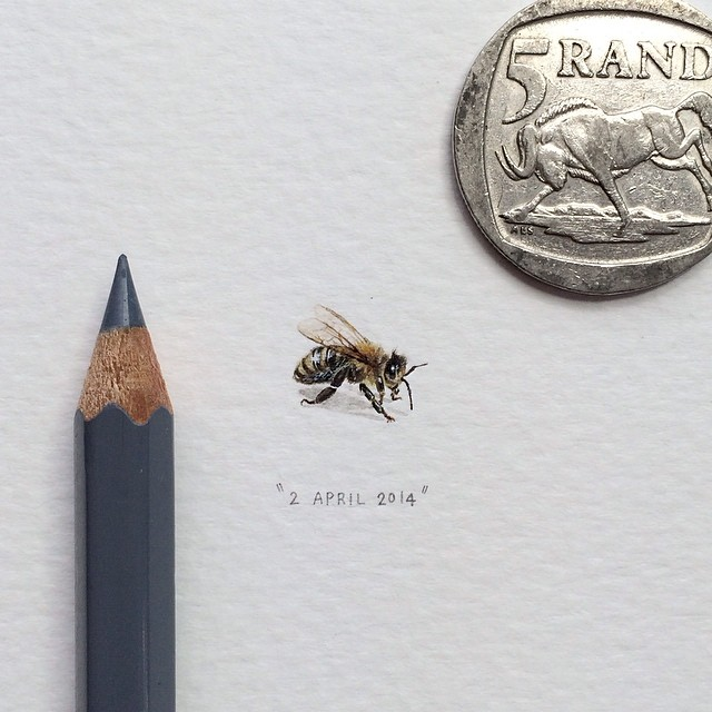 miniature-paintings-postcards-for-ants-lorraine-loots-8