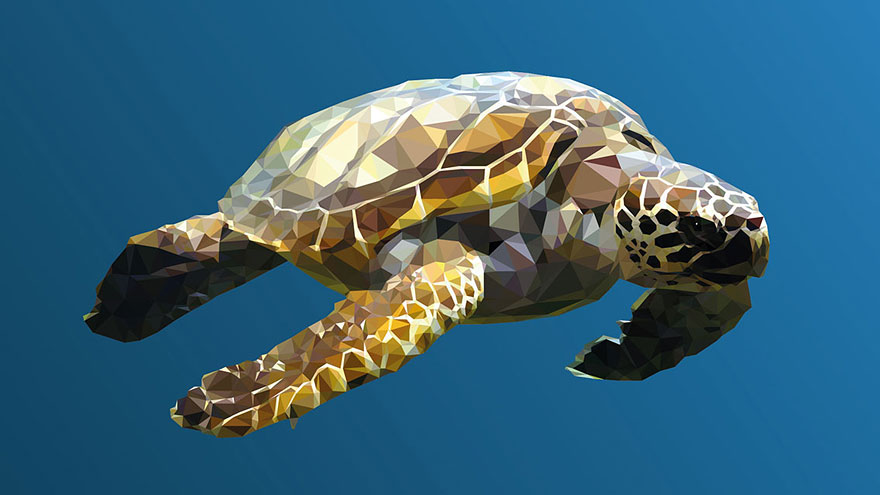 underwater-low-poly-illustrations-mordi-levi-2
