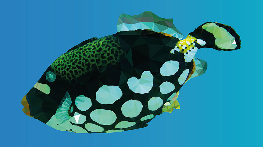 underwater-low-poly-illustrations-mordi-levi-5
