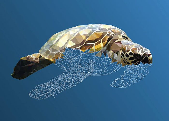 Underwater Life: Low-Poly Illustrations Made By Hand, Line After Line, Poly After Poly