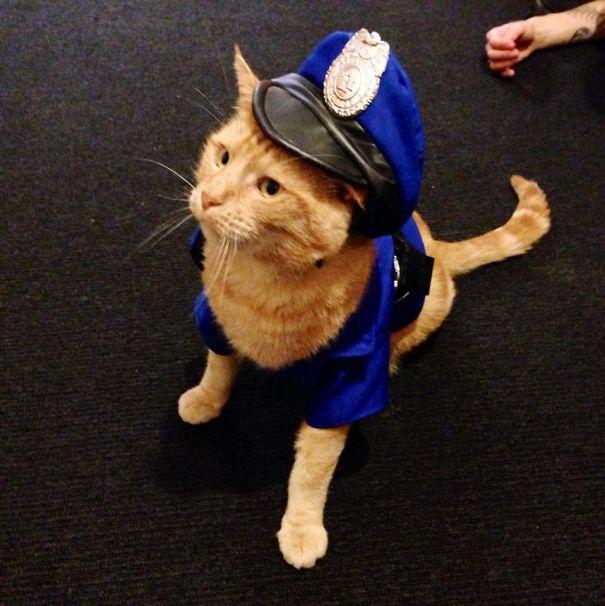 Alan As A Policeman