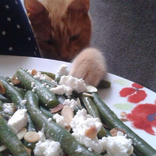 Green Beans! :-d