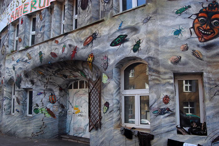 Duesseldorf Keifernstrasse, Creepy-crawly House