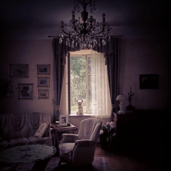 Lori At Home