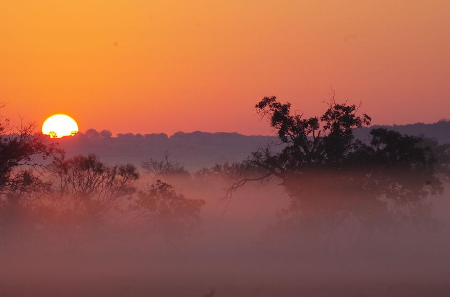 Misty Morning Meadow...evant, Texas