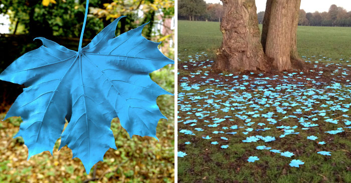 Someone Painted The Leaves Of This Maple In Hamburg And It Looks Beautiful