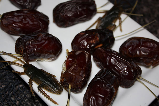Cream Cheese- And Walnut-stuffed Roach Dates