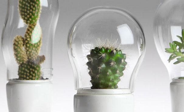 domsai-creative-terrariums-matteo-cibic-1
