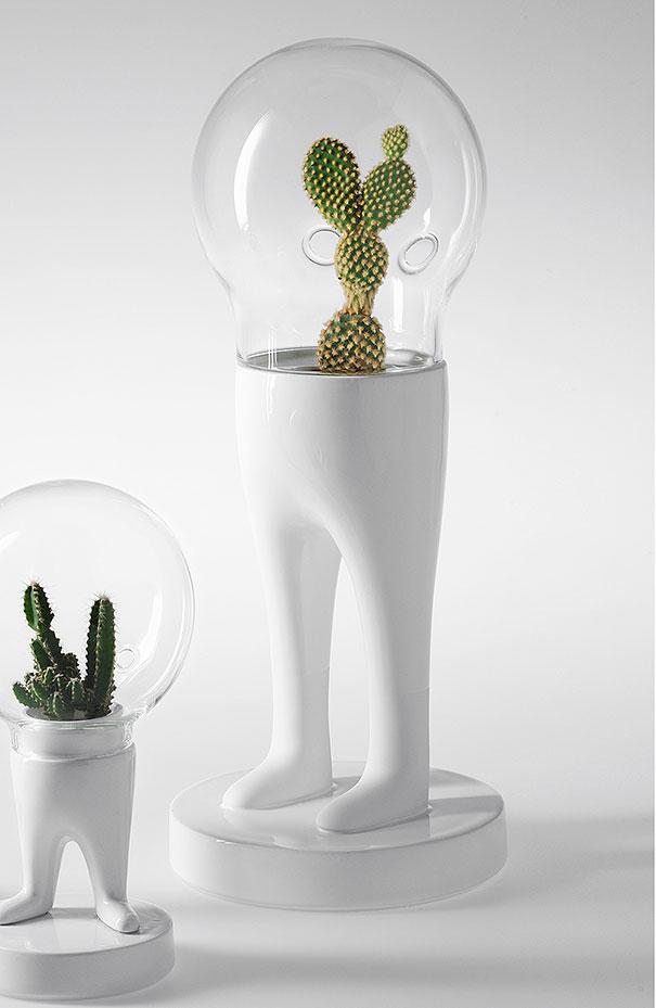 domsai-creative-terrariums-matteo-cibic-7