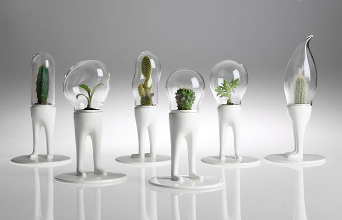 Artist's Surreal Terrariums Give Plants Legs