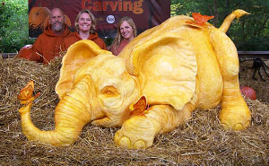900lb Pumpkin Carving Raises Awareness Of Elephant Killings
