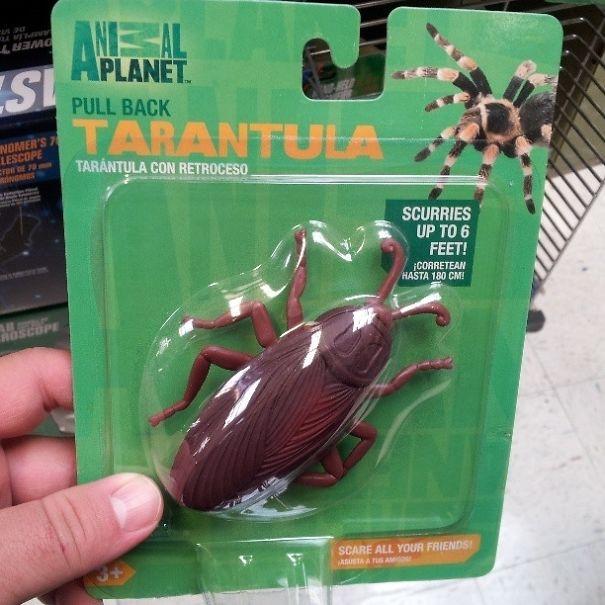 Pull-Back Tarantula