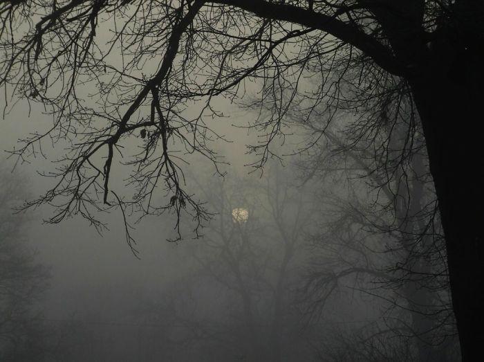 Gloomy Morning In Wroclaw – Poland