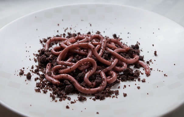 Raspberry Jello Worms On A Bed Of Chocolate Doughnut Crumbs