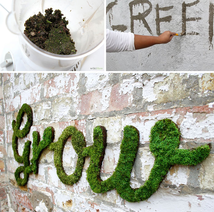 Moss Graffiti: The Coolest DIY Project Ever