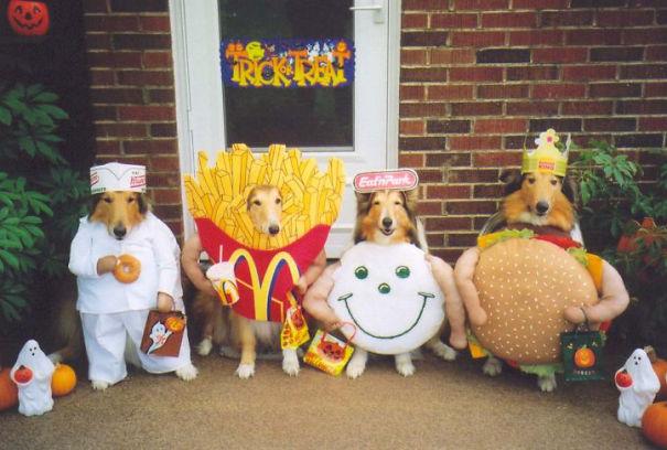 Mcdonnals Food Gang