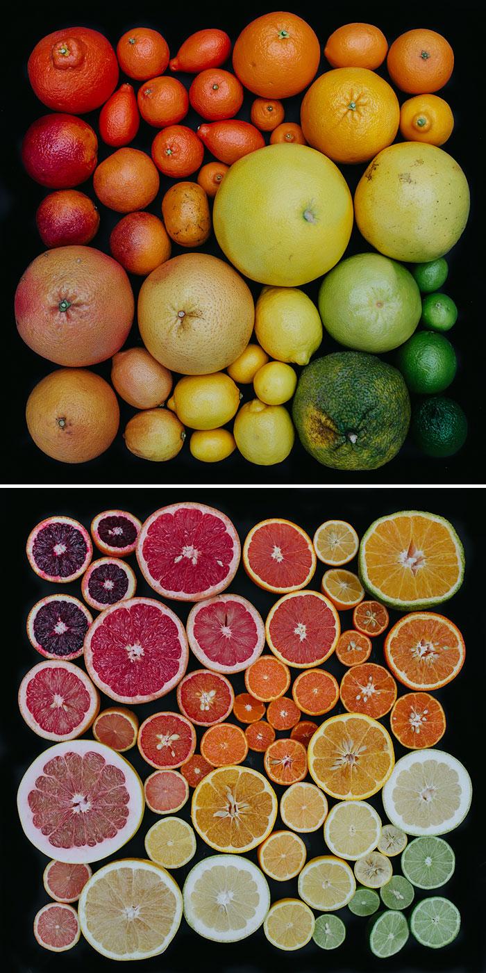 Citrus Colors