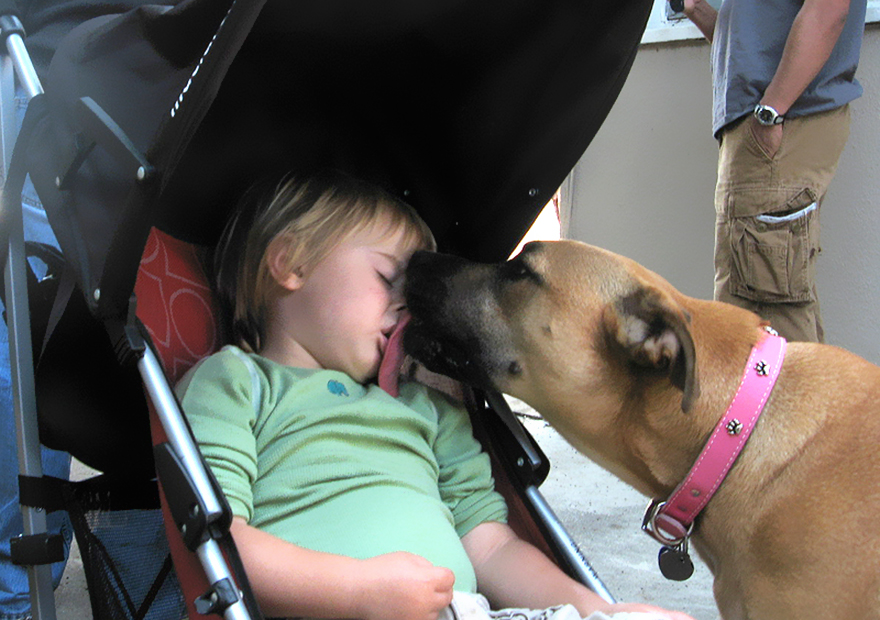 Little Kid, Big Dog