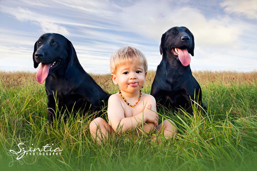 Small Kid, Big Dogs