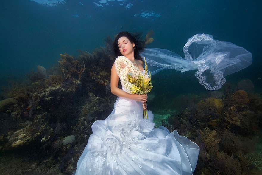 underwater-mermaid-brides-adam-opris-11