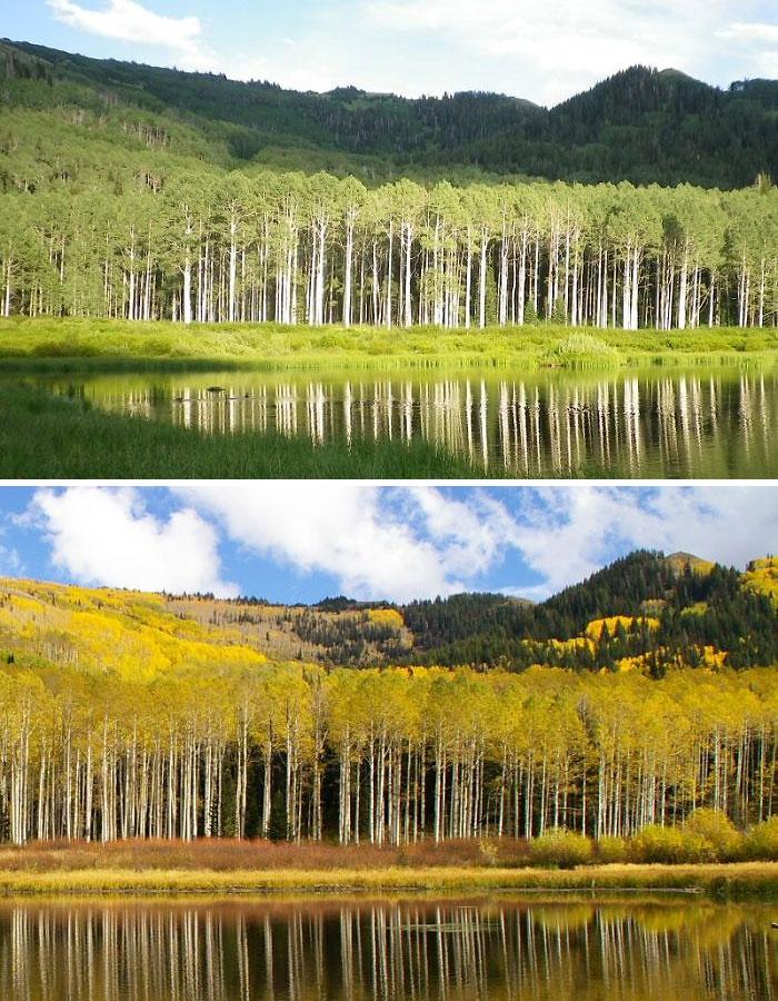 Willow Lake, Big Cottonwood Canyon, Utah