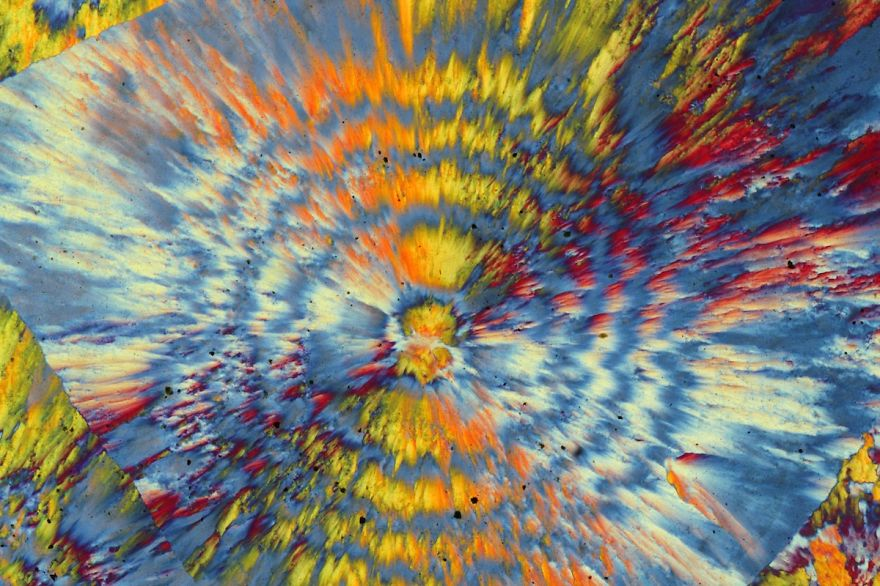 Inside A Rock! Stunning Images Of Ocean Jasper Macro To Micro
