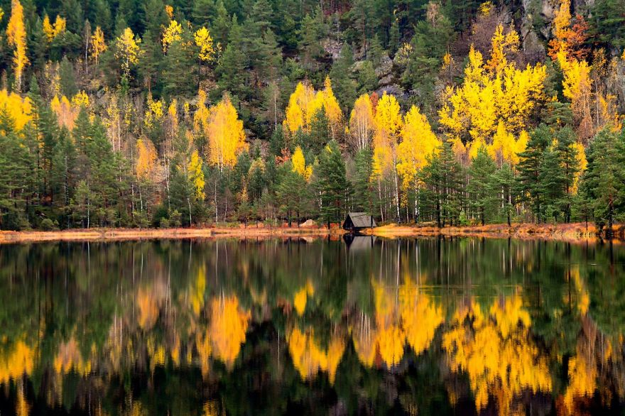 Hillestadheia Autumn