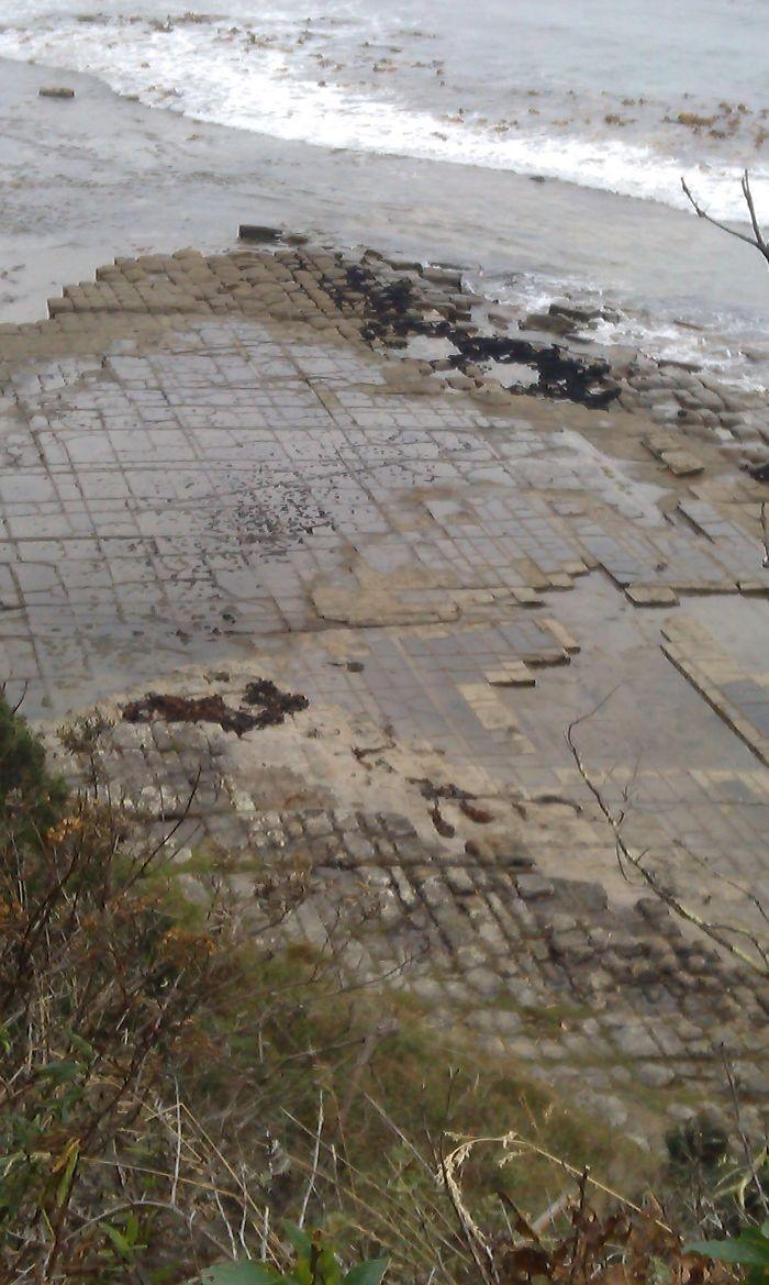 Tessellated Pavements, Tasmania, Aus.
