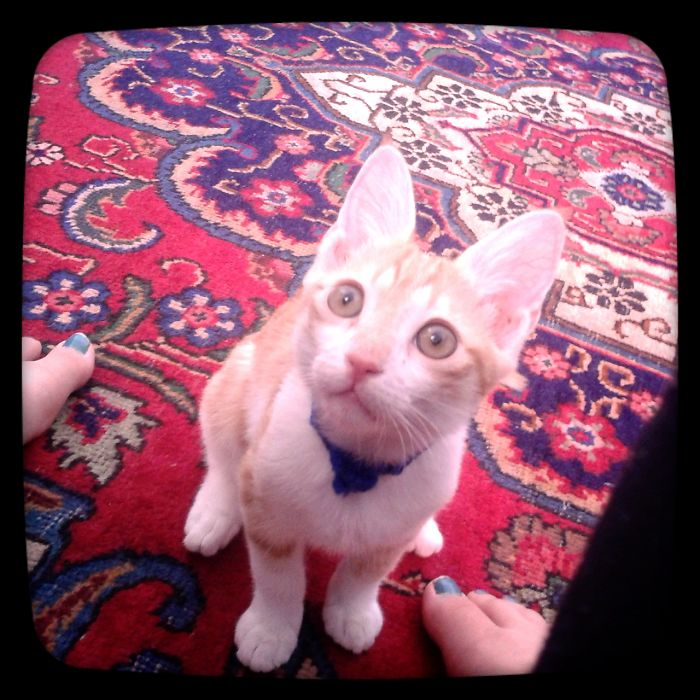 Biggest Ears ^_^ #pishuli