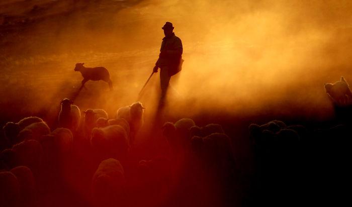 Shepherd At Sunset (miorita) – By The Mud Volcanoes (vulcanii Nroiosi) – By Tudor Jelescu