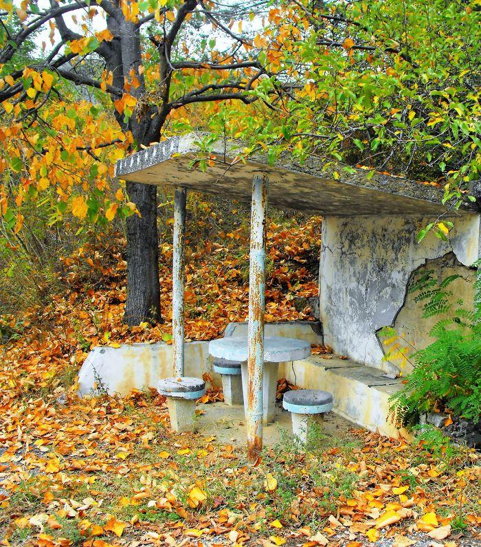 Autumn Picnic,bulgaria