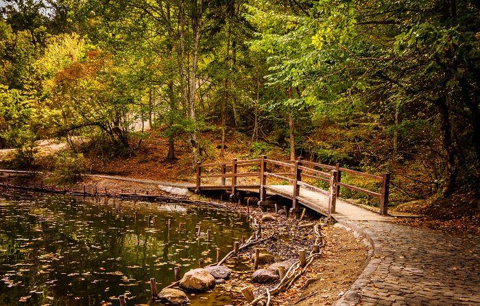 Near Bear Lake Sovata / Romania