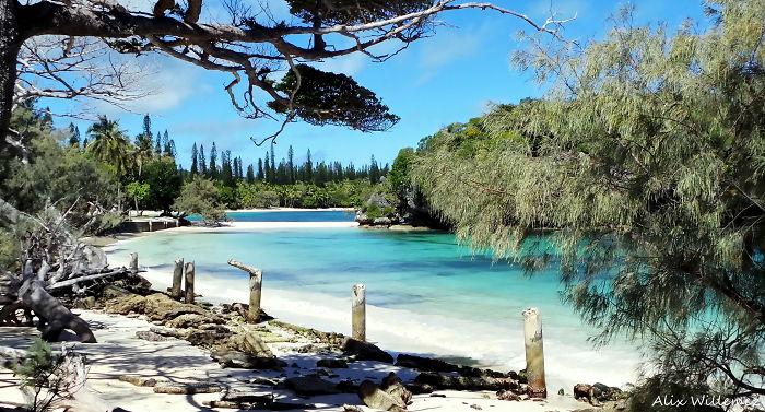 Island Of Pines, New Caledonia