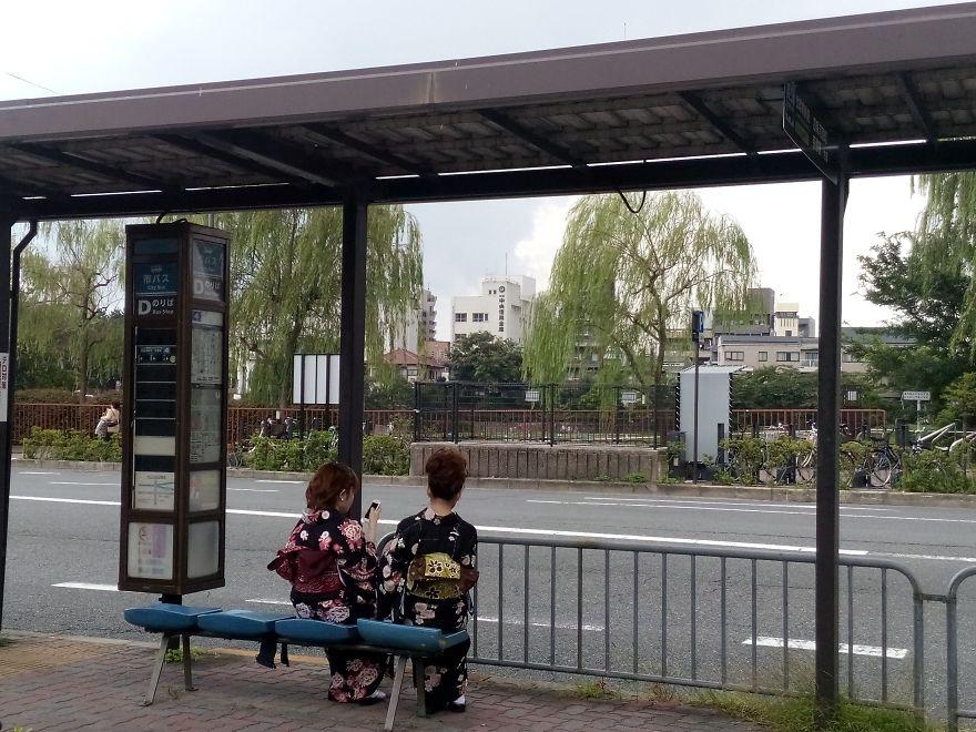 Modern-day Geishas, Japan 2014