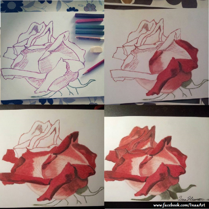 Rose Drawing, Step-by-step