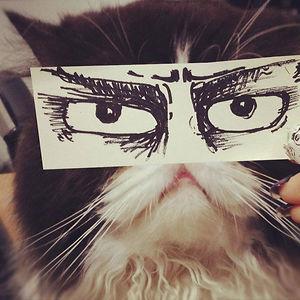 #meowmatsu