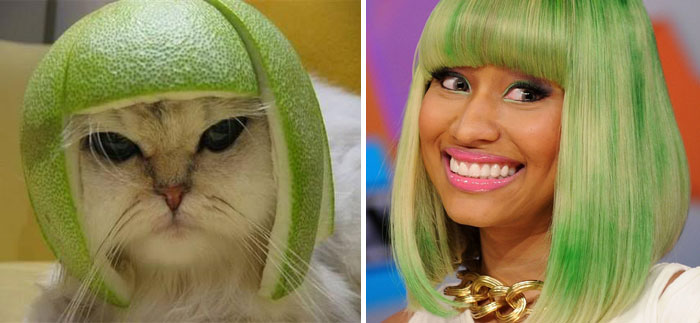 Kitty With Pomelo Hat Looks Like Nicky Minaj