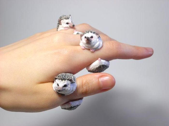 Hedgehog Rings By Jiro Miura