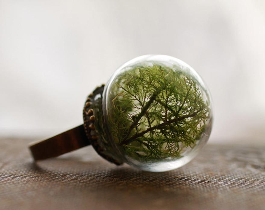 Moss Globe Ring